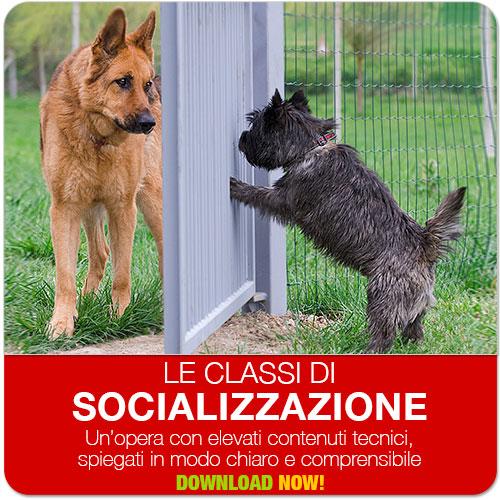classi di socializzazione
