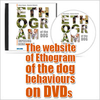 website ethogram right