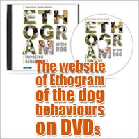 website ethogram right